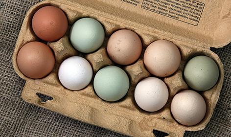 wilkins-fresh-farm-eggs-assorted